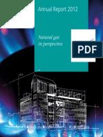GasTerra Annual Report 2012