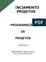 Programação de Projetos