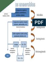 procesos anaerobios