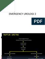 Emergency Urologi