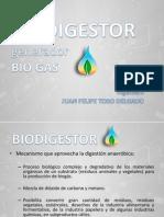 biodigestor-130530133159-phpapp01