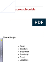 Macro Moleculele