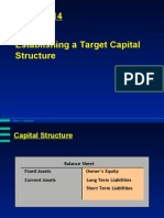 Chapter 14 Establishing a Target Capital Structure
