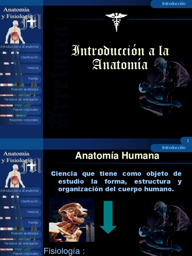 Generalidades Anatomia y fisiologia