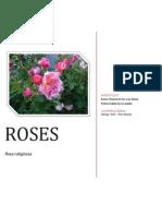 rosesbiopaper