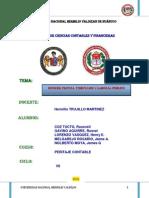 Peritaje Contable Judicial - Informe- Trabajo