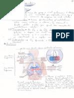 Fisiologia - Apontamentos -Aparelho Respiratorio
