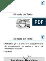 mineria de texto