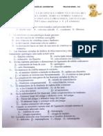 2º EXAMEN Traumatología B