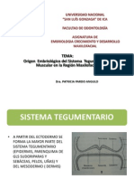 1era Clase Embriologia