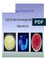 Seminario Nc2b03 Cultivo de Microorganismos