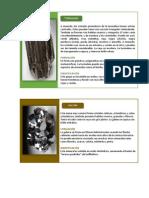Turmalina, galena y carbono