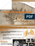 patologia_suprarrenal_castella_def.ppt