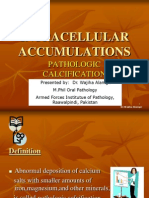 Intracellular Accumulations