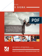 ebook_lean_six_sigma_xlgroupe_503915.pdf