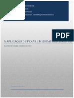 Pmas_sum Executivo Final Ipea_depen 24nov2014