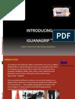IguanaGrip - India's First Anti-Slip Solution