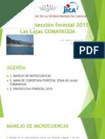 Propuesta Proteccion Forestal Lajas Comayagua