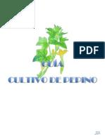 Pepino - Cultivo