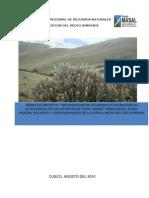 Recuperacion de Acuiferos en Microcuencas Altoandinas de Los Distritos de Tupac Amaru, Pomacanchi, Accha, Omacha, Pillpinto y Chinchaypuquio de La Cuenca Media Del Rio Apurimac