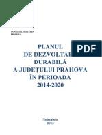 Plan Dezv 29nov2013