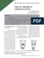 Cancer Laringe e Fonoaudiologia