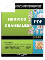 Monografia de Los Pares Craneales