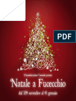 Natale a Fucecchio 2014