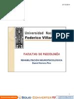 REHAB NPS.pdf