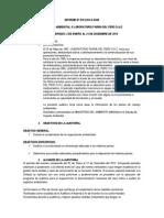 Informe De auditoria Ambiental