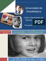 01 Sistema Familiar y Desarrollo Psicosocial 2013 b