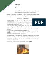 Que_es_el_fuego (1).pdf