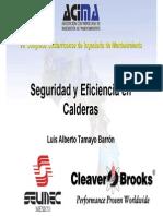Seguridad y eficiencia en Calderas