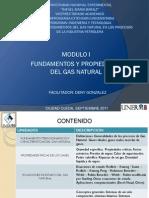 Modulo Fundamentos y Propiedades Del Gas Natural