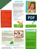 disability snapshot fact sheet