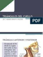 tringulos-del-cuello-1221961097906075-9.ppt