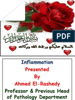 inflammation dr. elrashedy.pdf