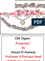 WEEK 5 Cell injury.pdf
