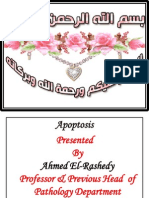 WEEK 6 Modified Apoptosis.pdf