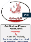 WEEK 9 Calcification & pigmentation.pdf