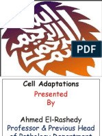 WEEK 10 Cell adaptation.pdf