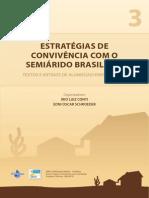 Estratégia e Convivência Com o Semiárido Brasileiro