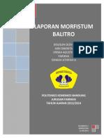 Laporan Ballitro-kelompok 2