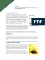 Comunicaciones y Rightsizing Caso 1 Comunicación