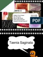 Taenia Saginata