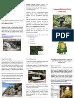 sequoia field trip