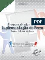 Manual Ferro2013