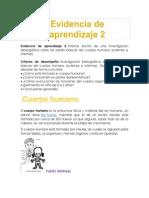 Evidencia de aprendizaje 2.docx
