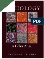 Pathology A Color Atlas.pdf