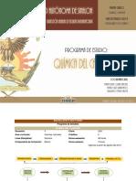 PN_11_quimica_del_carbono.pdf